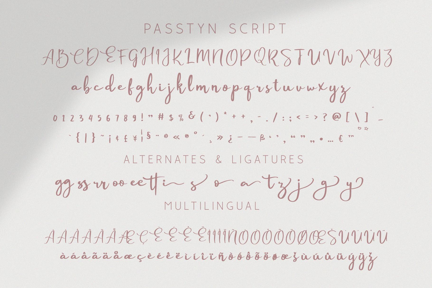 Passtyn - Handwritten Font Duo example image 3