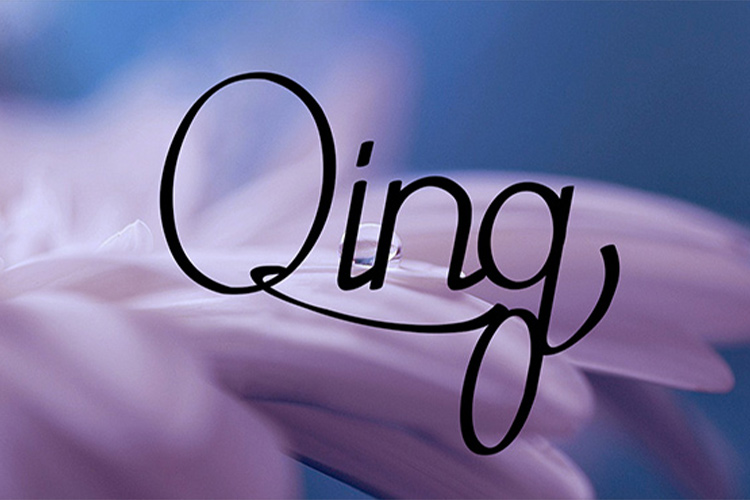 Qing Font example image 7