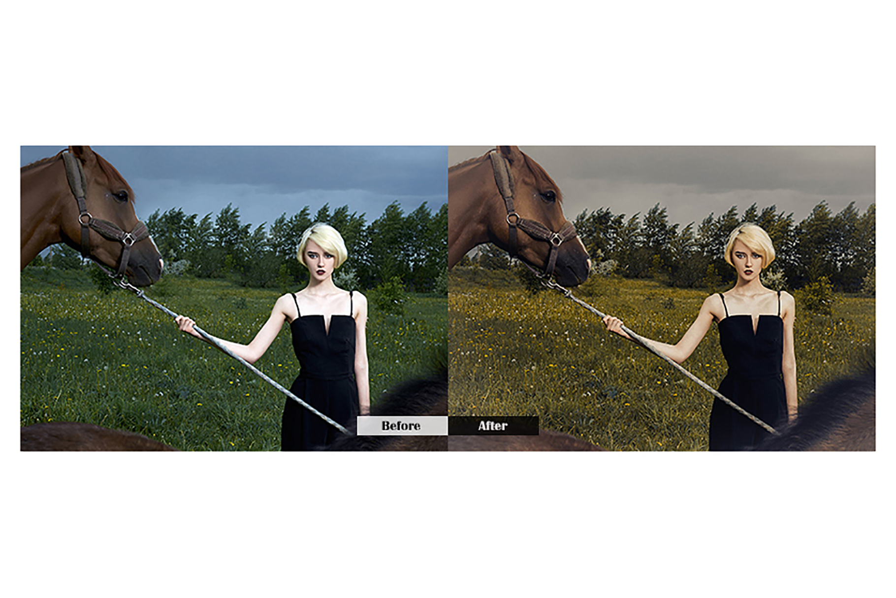 Fashion Model Lightroom Mobile Presets example image 3