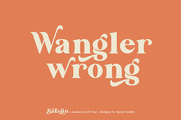 Bakojin//Modern Serif Font example image 7