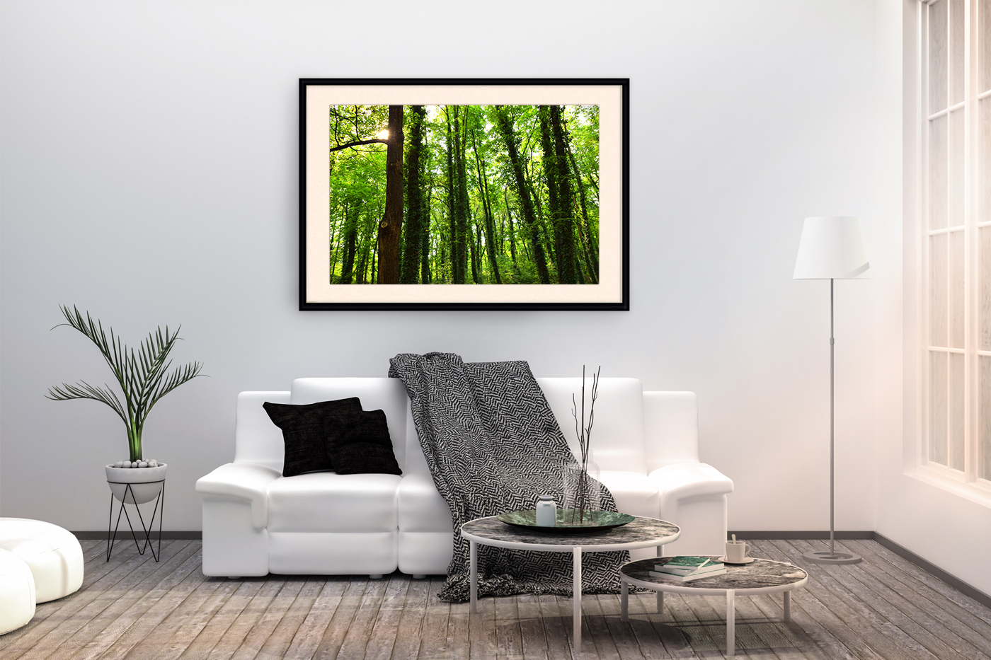 Nature photo, landscape photo, forest photo, spring photo example image 3