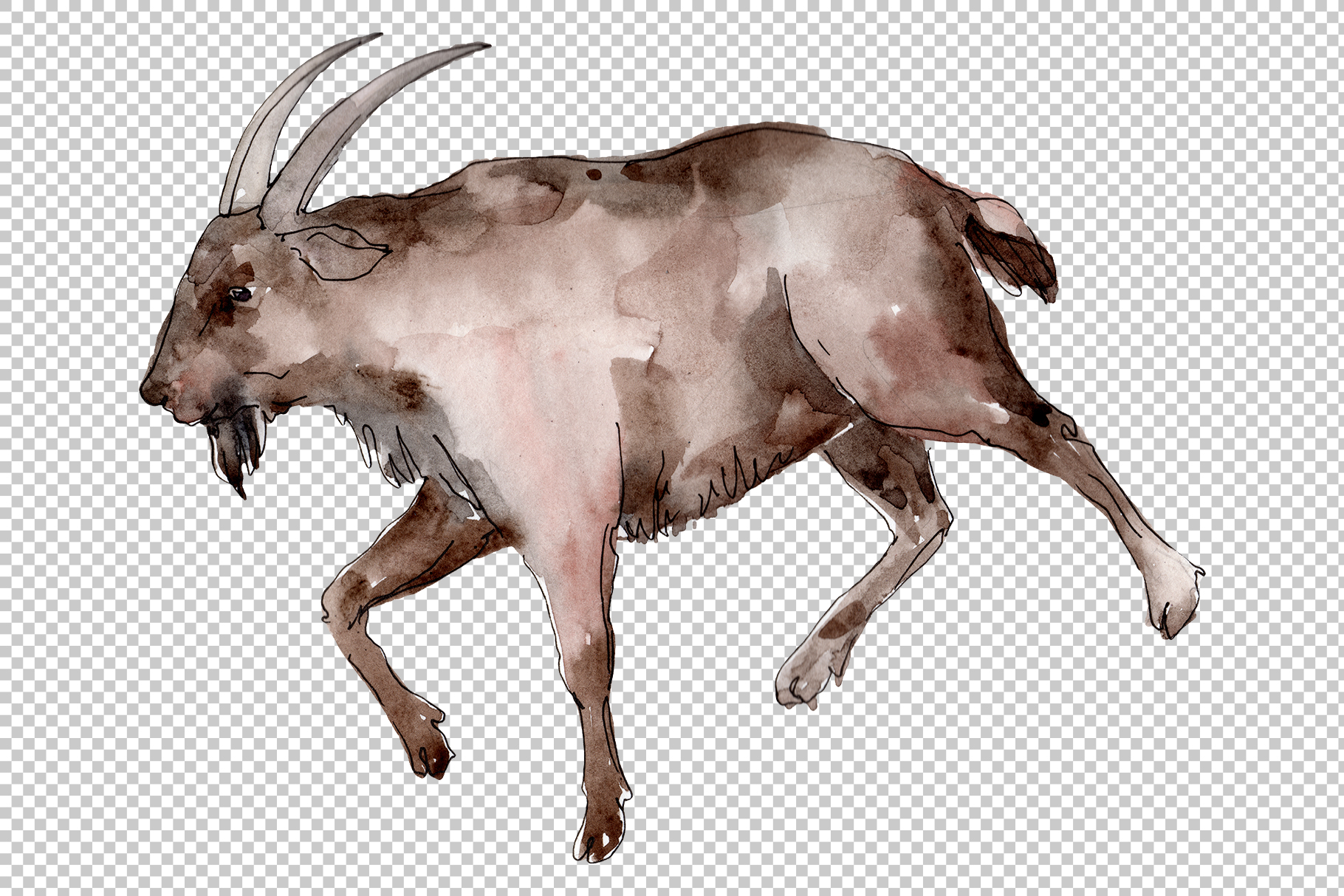 Farm animals Goat Watercolor png example image 5