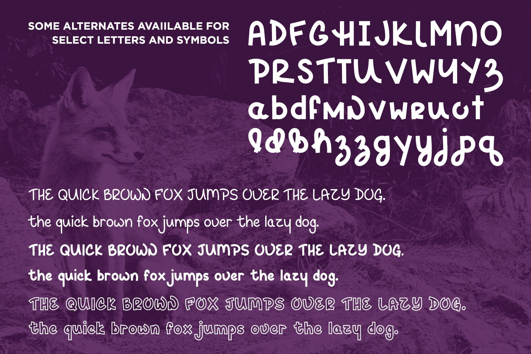 Hey Fox Font Trio example image 4
