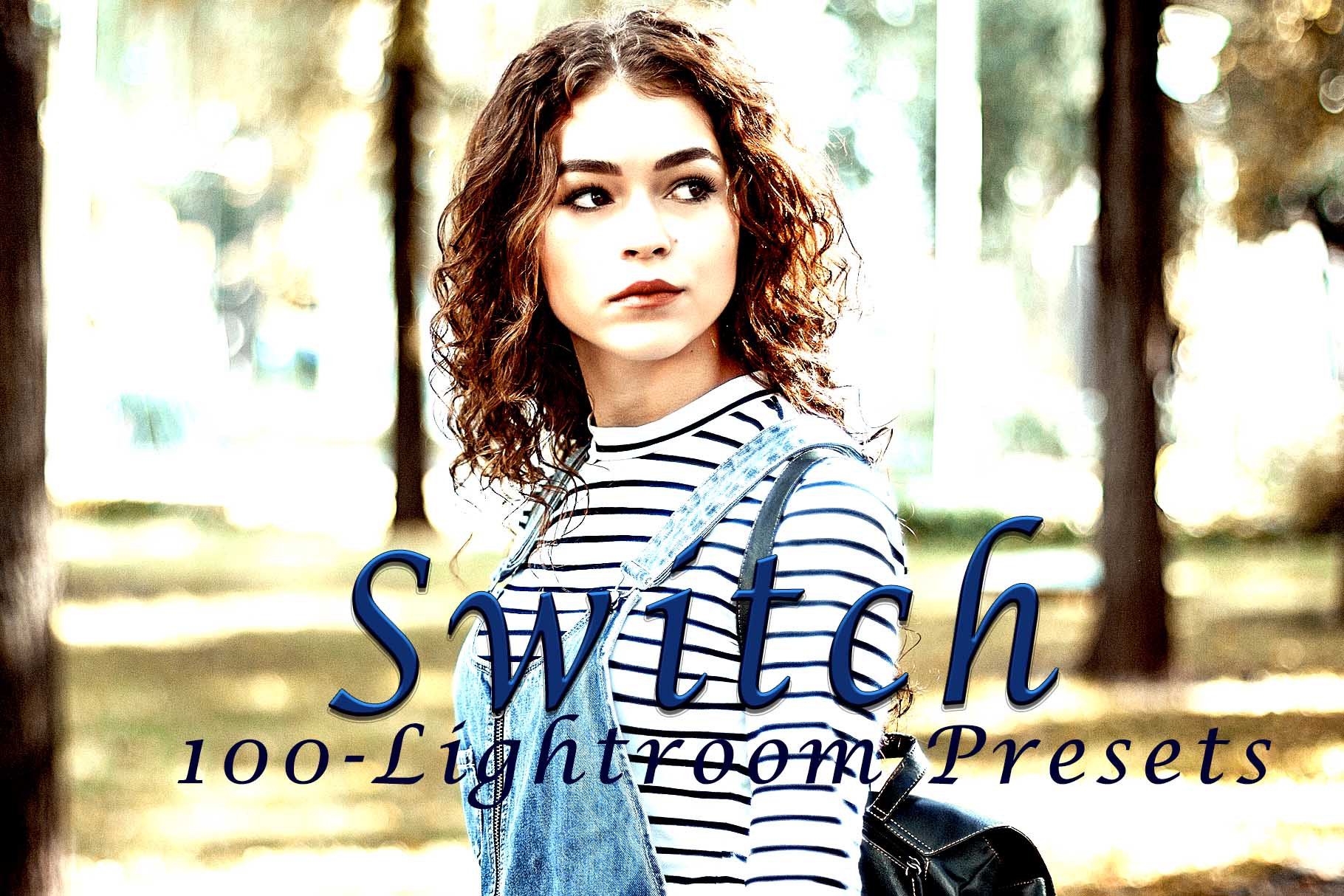 Switch Lightroom Presets example image 7