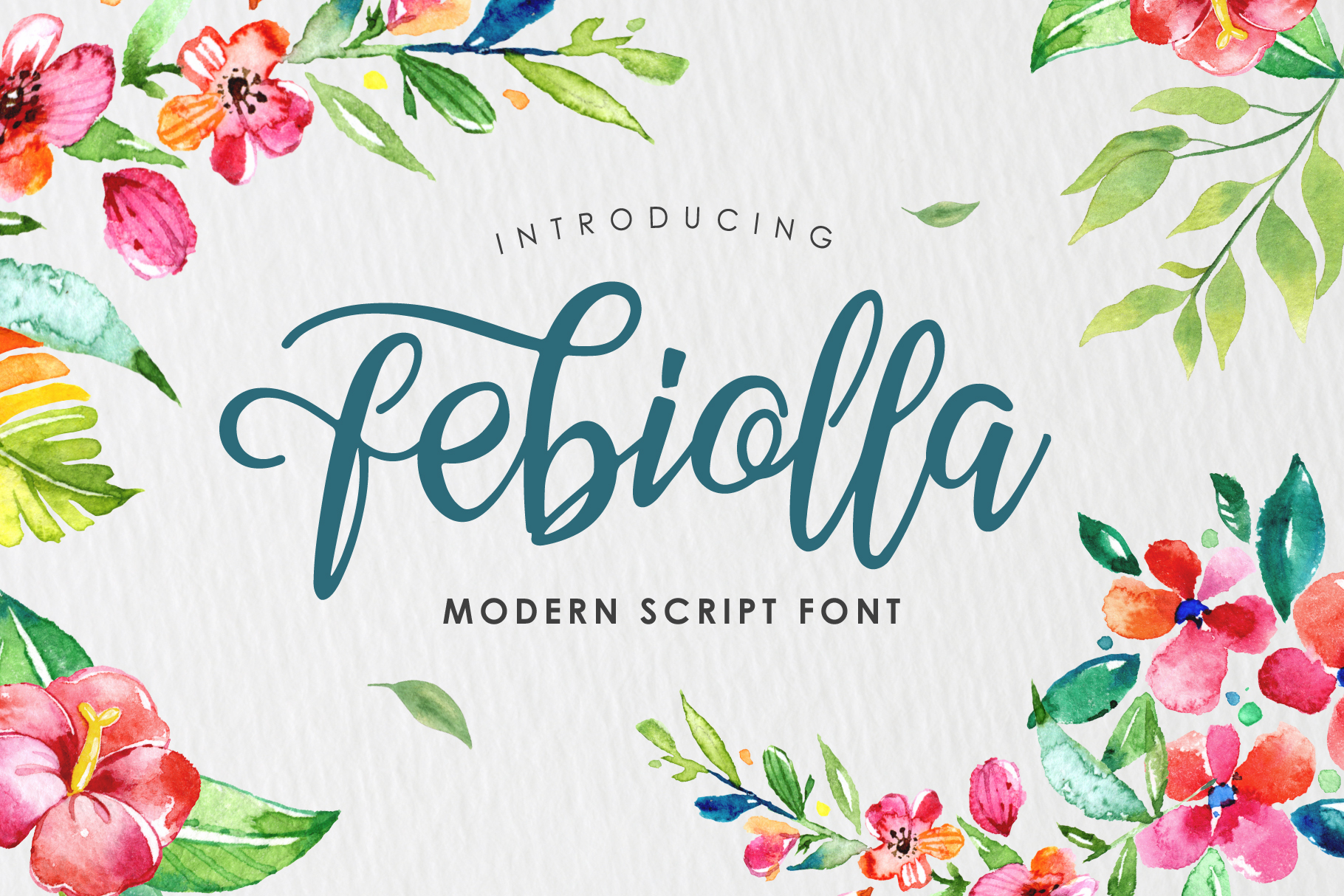 Febiolla Script example image 1