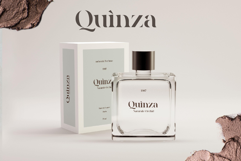 Quakiez - Luxury Modern Serif example image 4