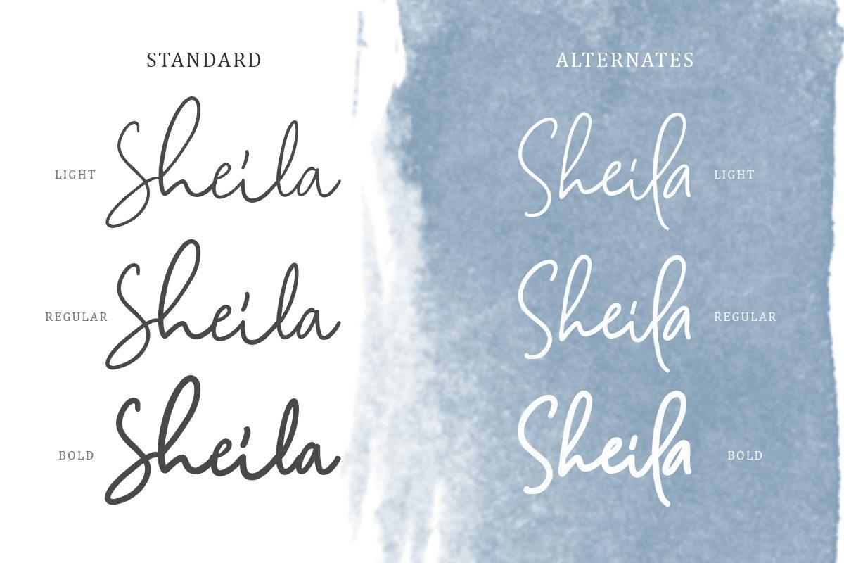 Camilla - Signature Script 6 Fonts example image 6