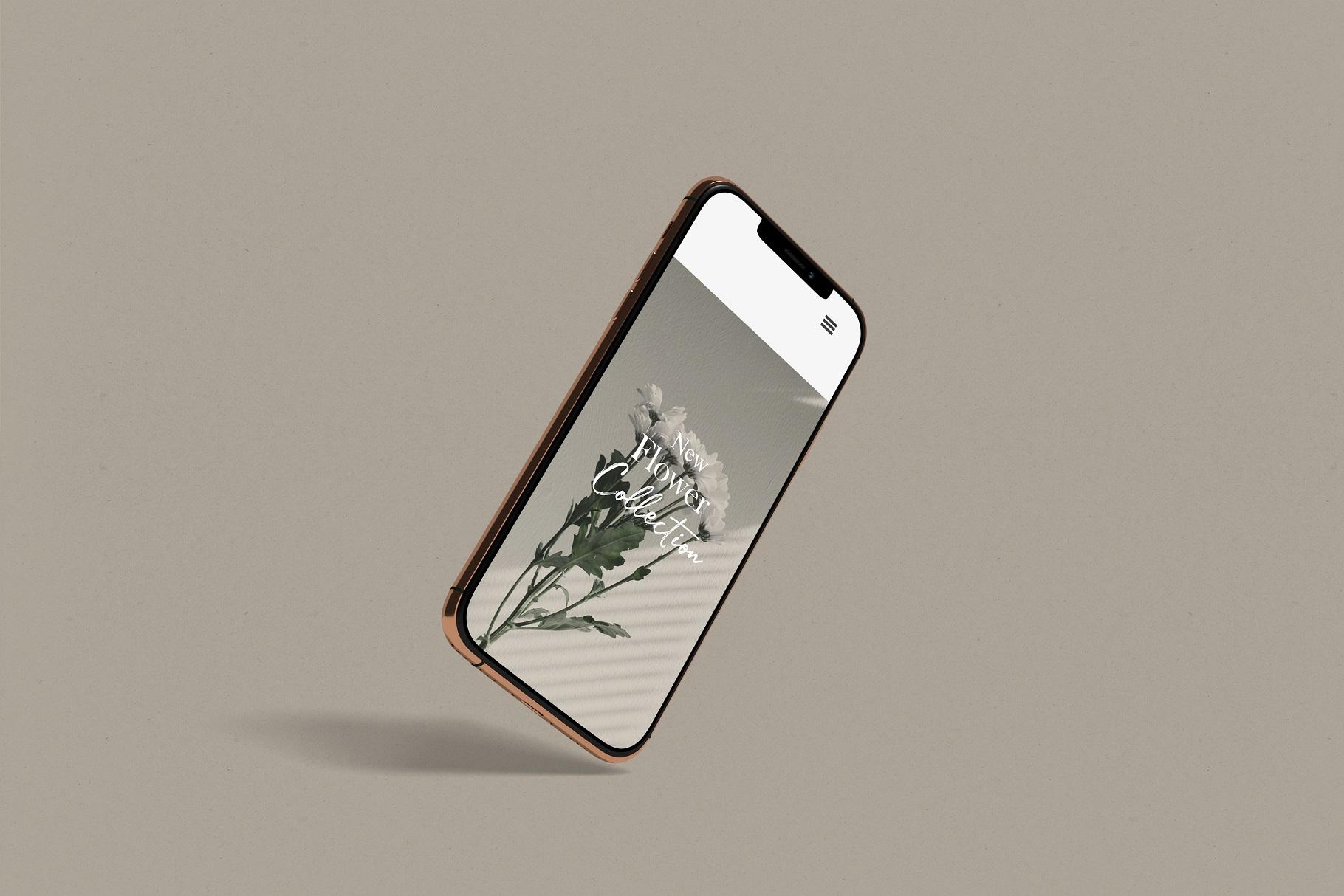iPhone 11 Pro example image 2
