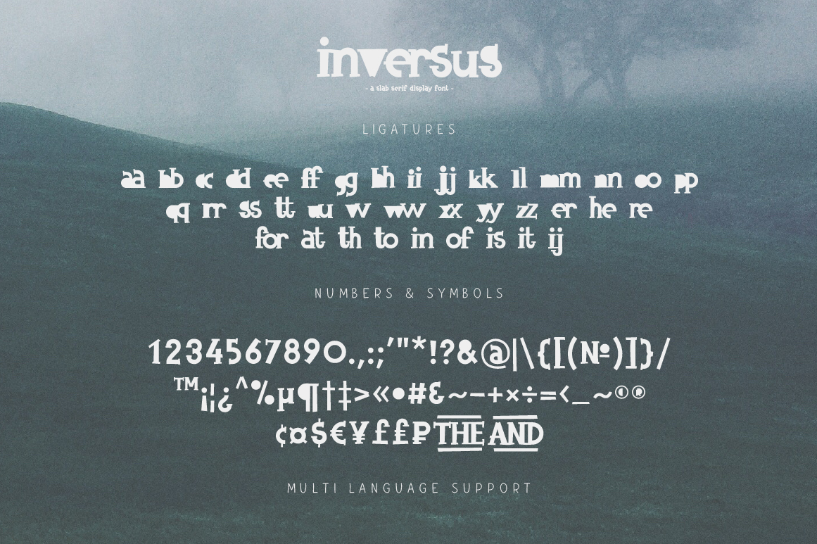 Inversus – a slab serif display font example image 9