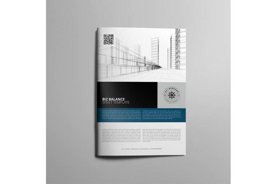 Biz Balance Sheet Template example image 5