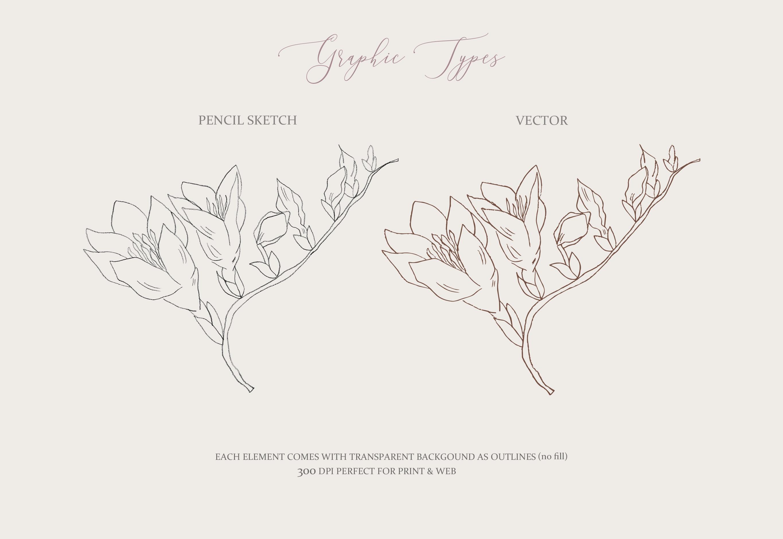 Fine Art Florals - Pencil Sketches example image 5