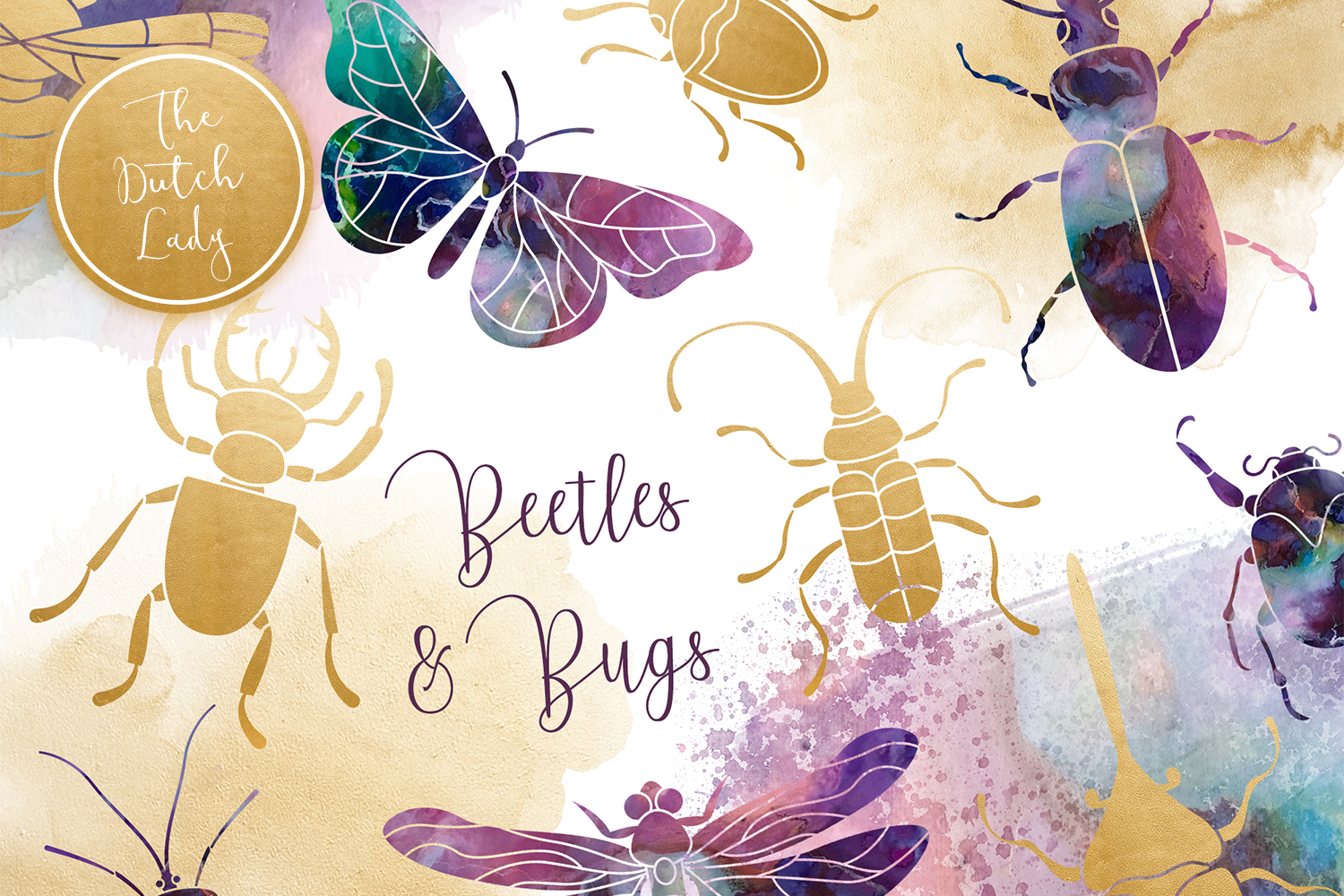 Beetles & Bugs Clipart Set example image 1