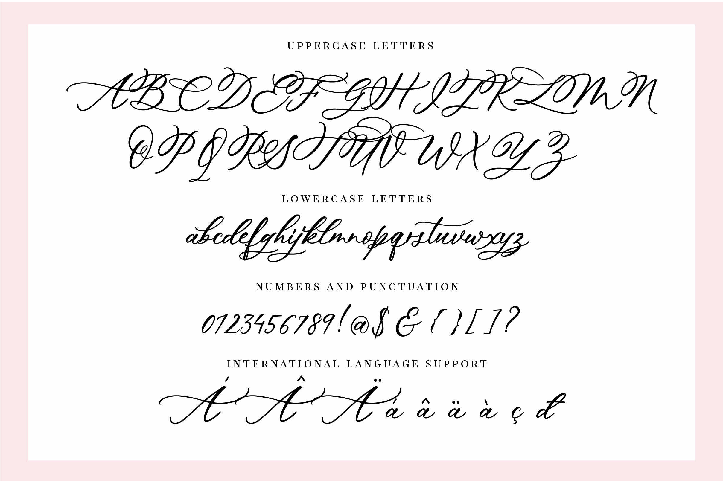 Hey Darling Calligraphy Script Font example image 10