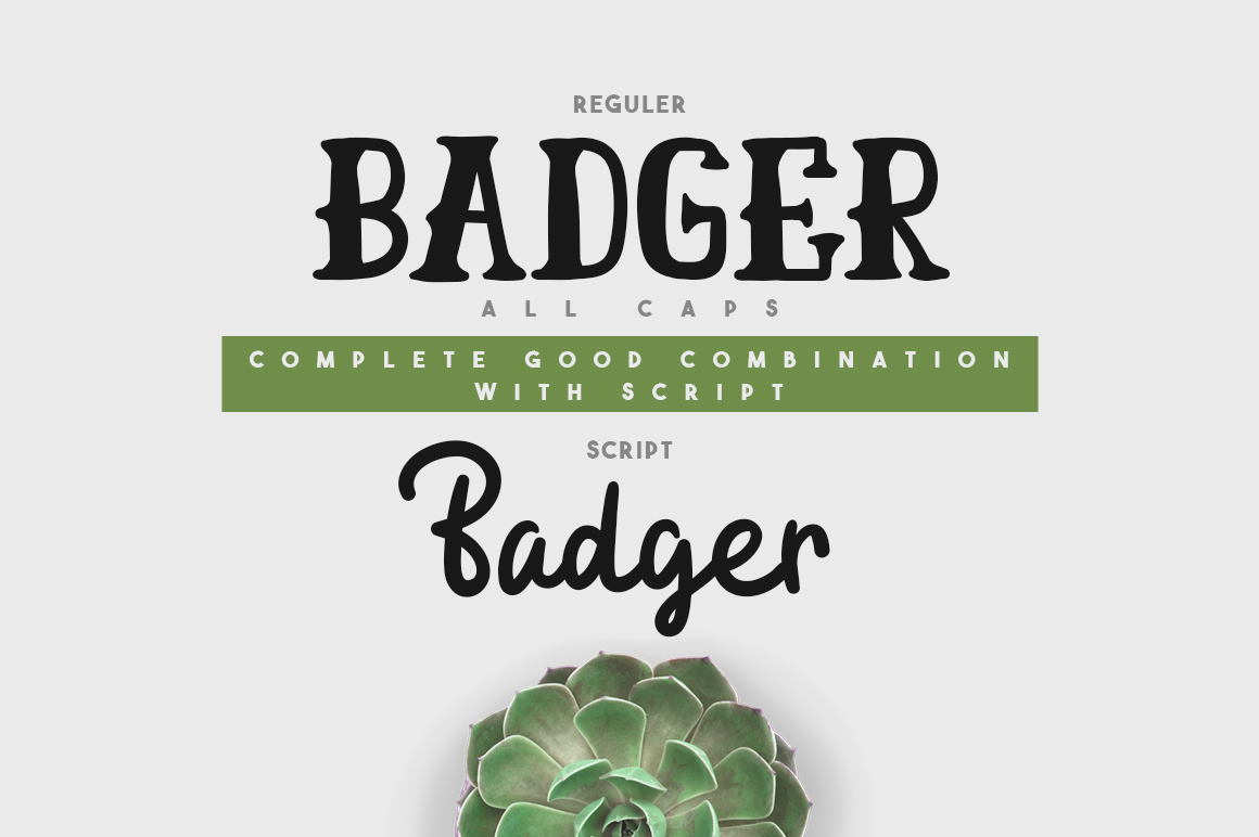 Badger Font Duo example image 2