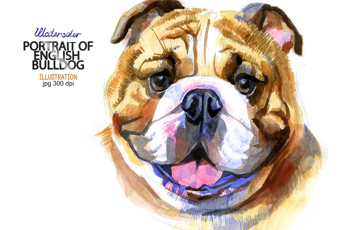 Watercolor English bulldog example image 1