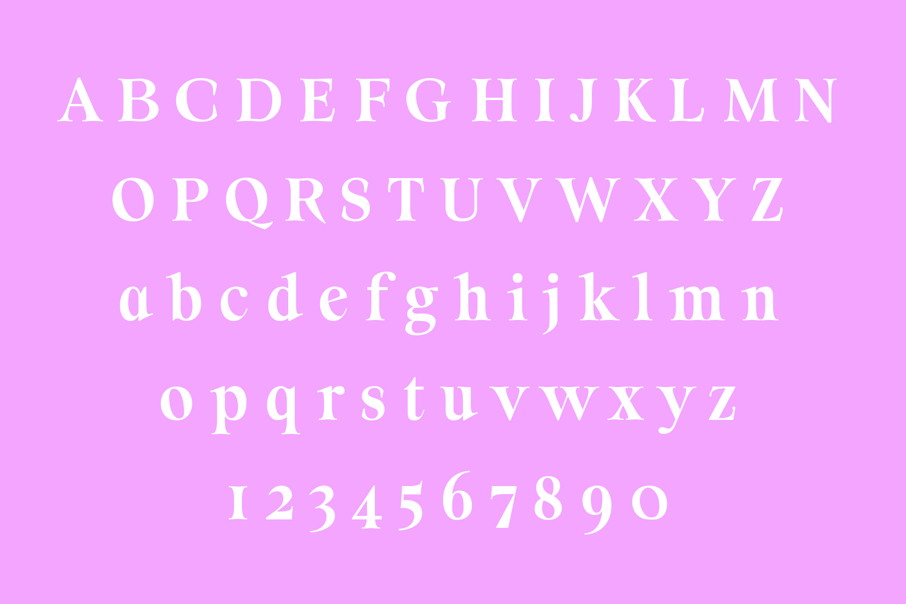 ORSON, An Essential Serif Typeface example image 2