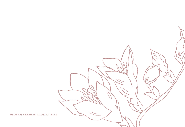 Fine Art Florals - Pencil Sketches example image 8