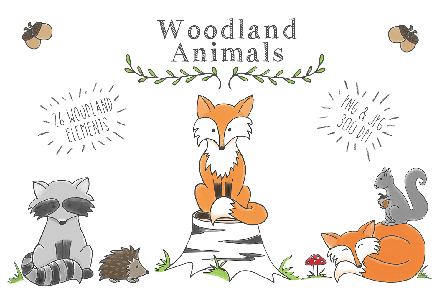 woodland clipart animal animals clip creatures graphics watercolor illustration illustrations baby forest theme drawing sensitive graphic creativemarket duran sunny designer
