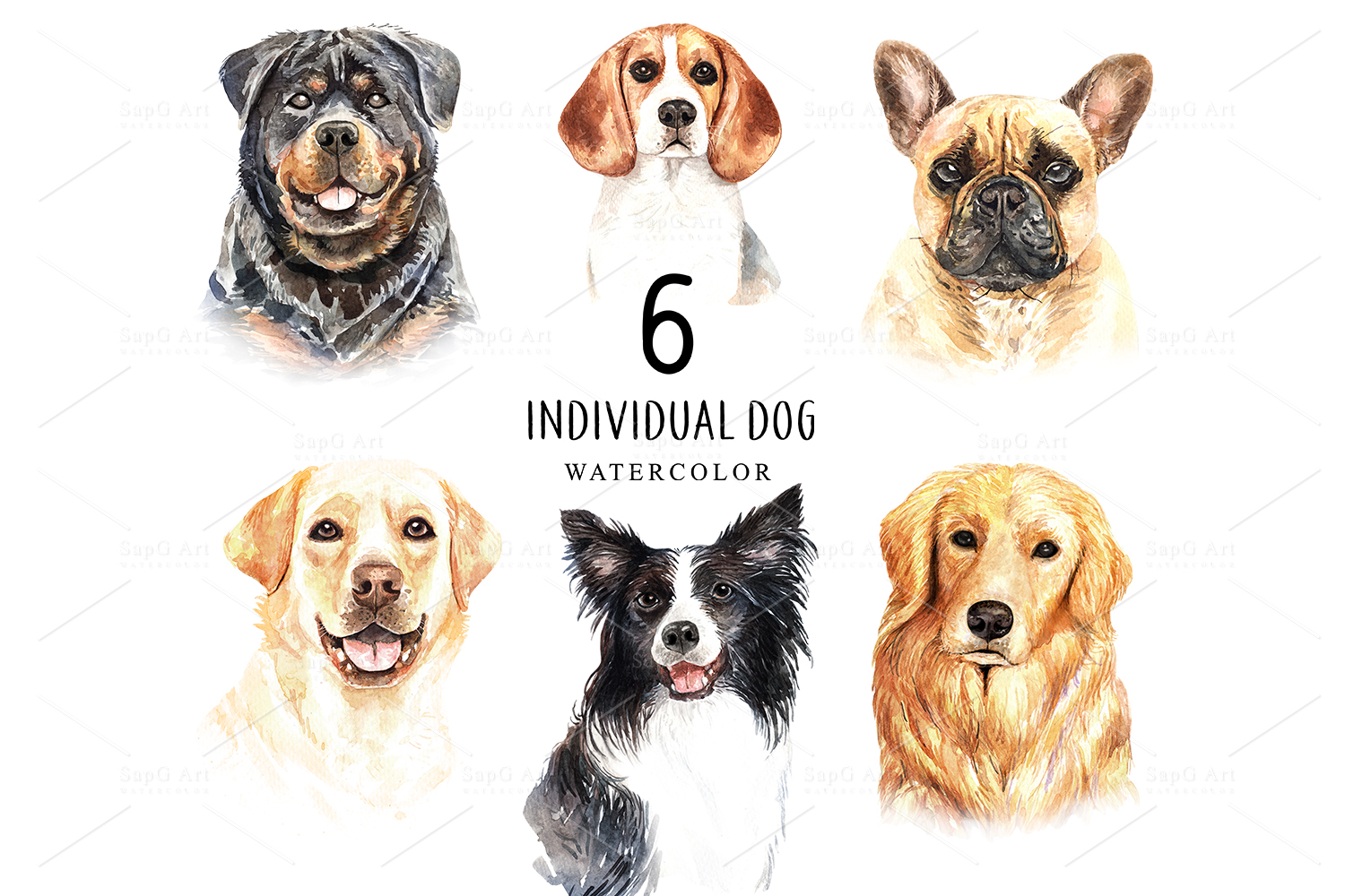 Dogs and accessories watercolor clipart, Pets clip arts SetB example image 2