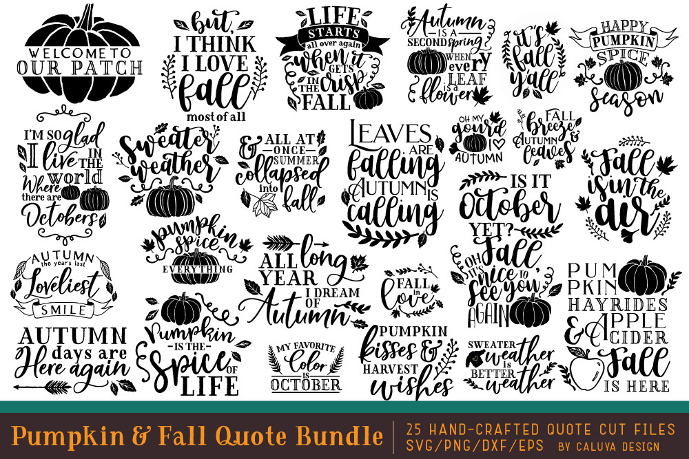 Pumpkin & Fall Quote SVG Cut File Bundle example image 1