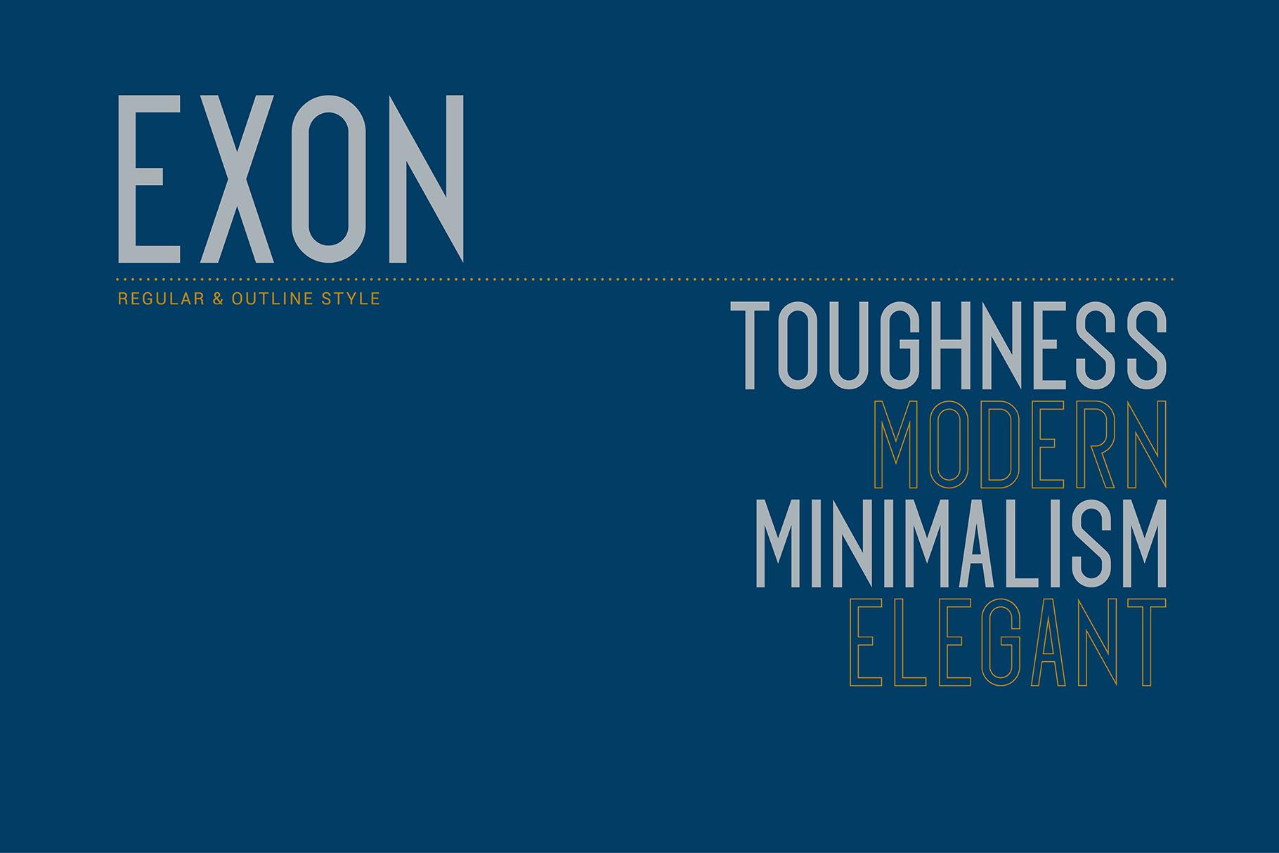 EXON example image 2