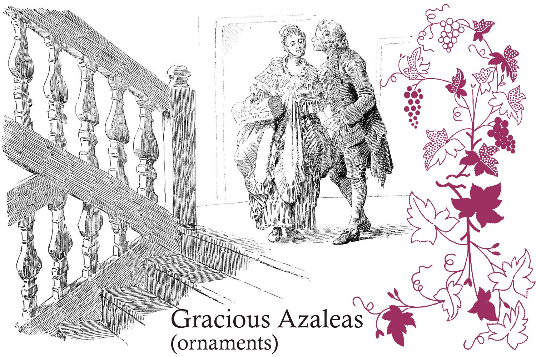 Gracious Azaleas example image 3