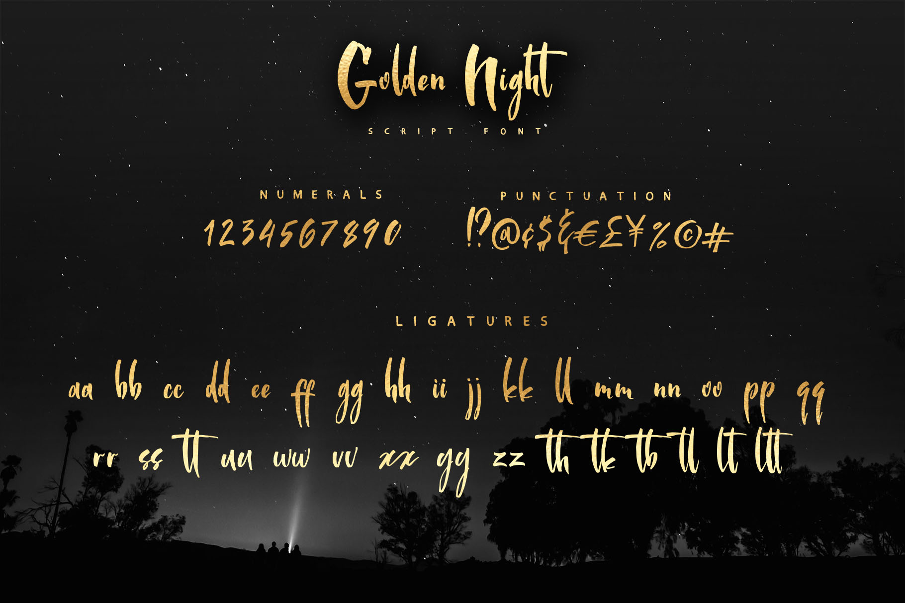 Golden Night script font example image 3