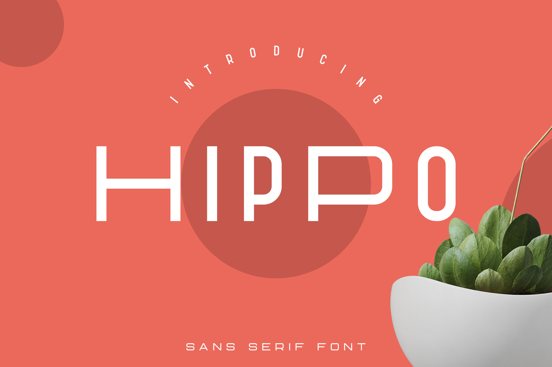 Hippo Sans Serif | 3 styles example image 1