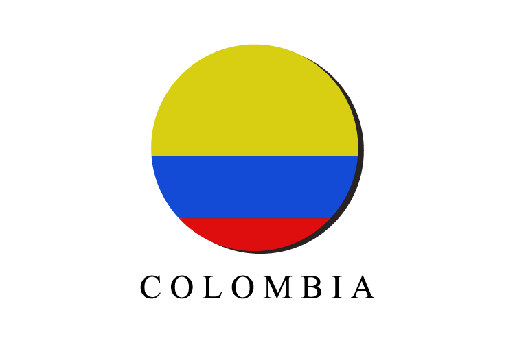 Colombian flag example image 1