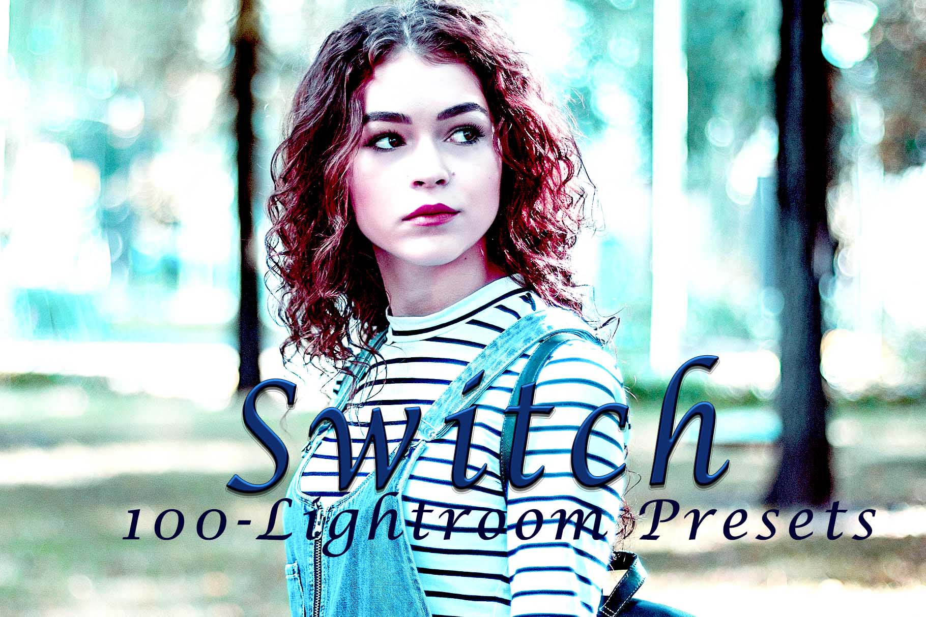 Switch Lightroom Presets example image 1