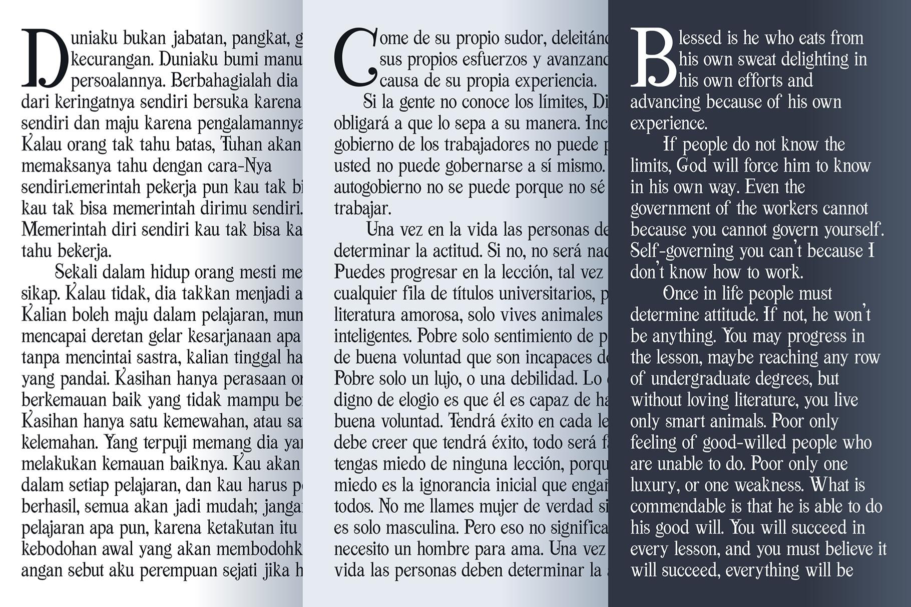 Viktoria // Elegant Font Duo example image 10