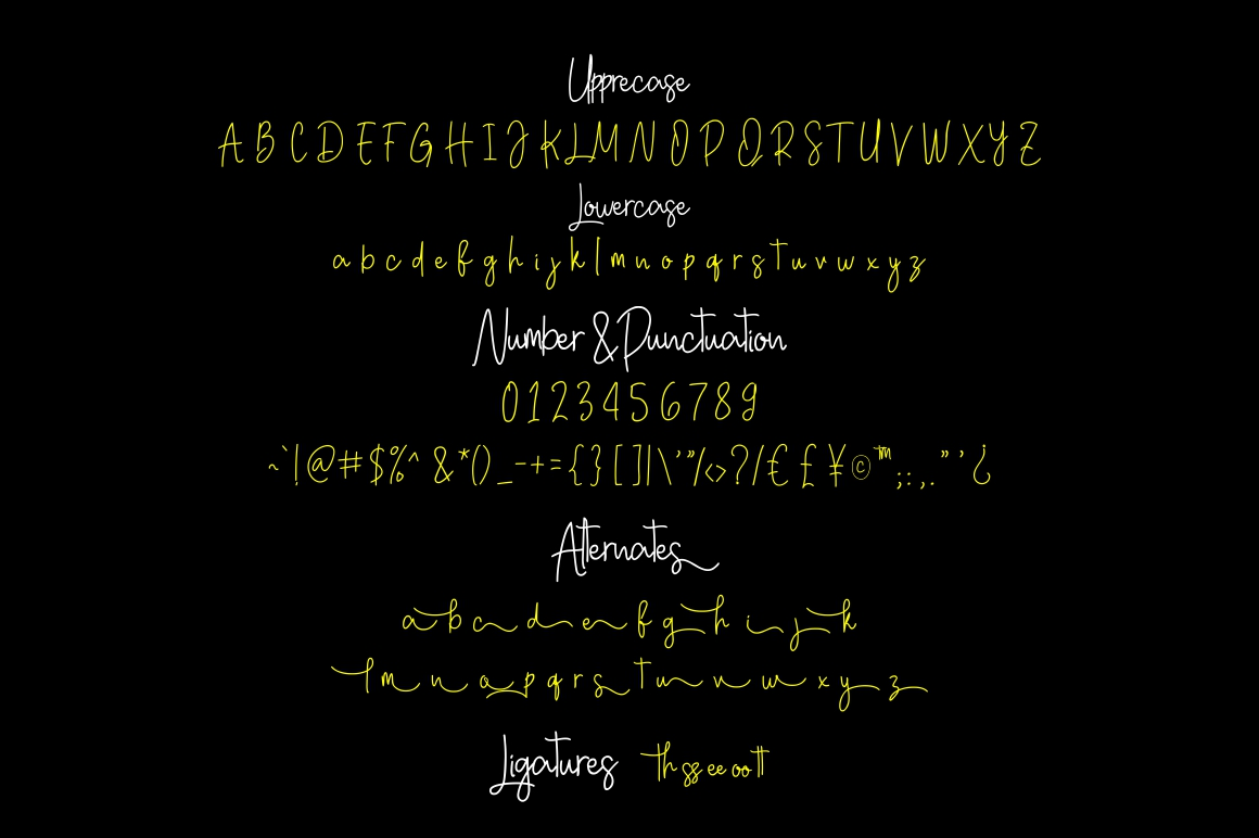 Georghia Modern Script Font example image 7