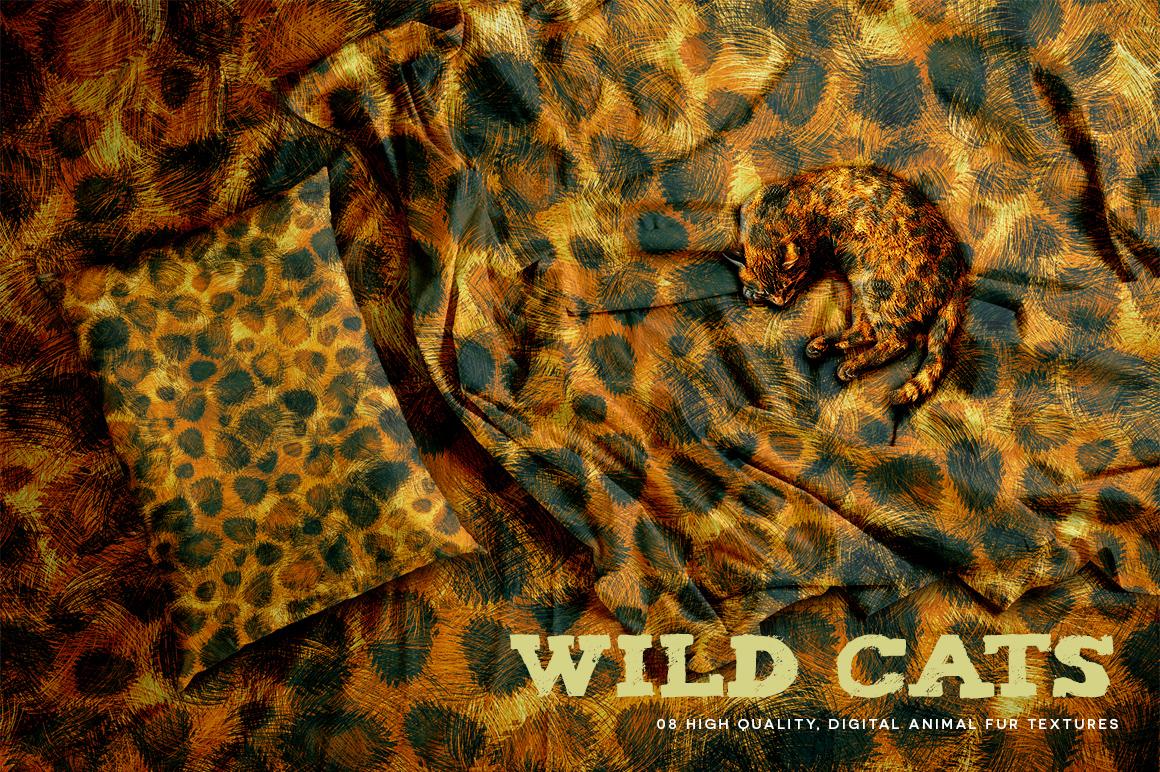 Wild Cats example image 1
