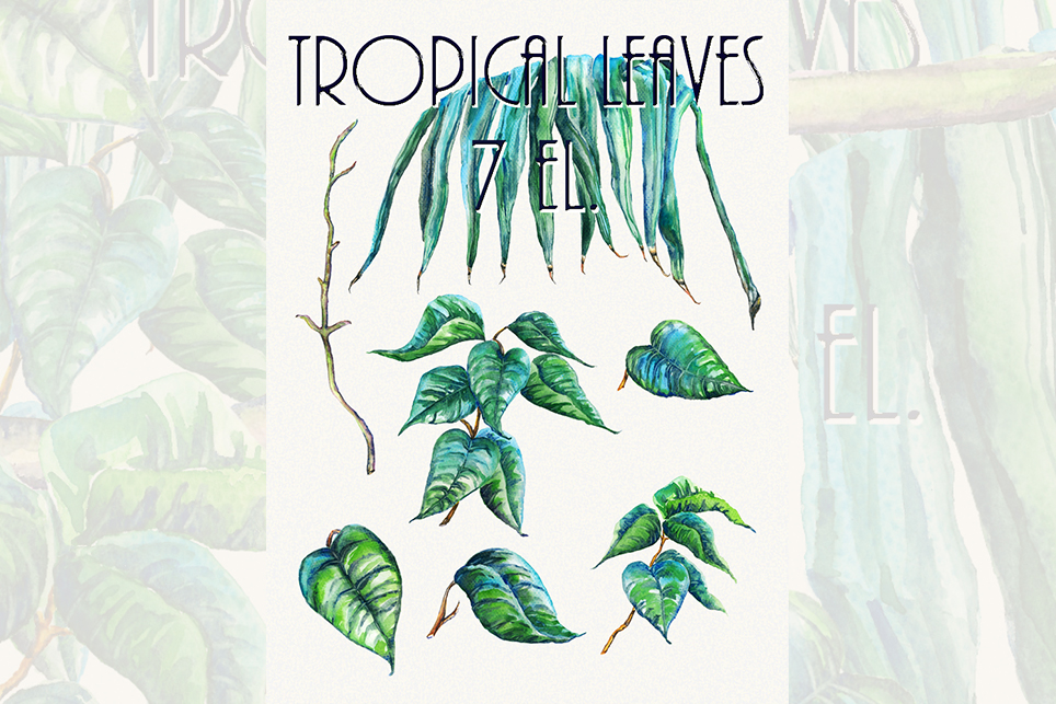 Leaf clipart, tropical leaf clipart, Watercolor example image 2