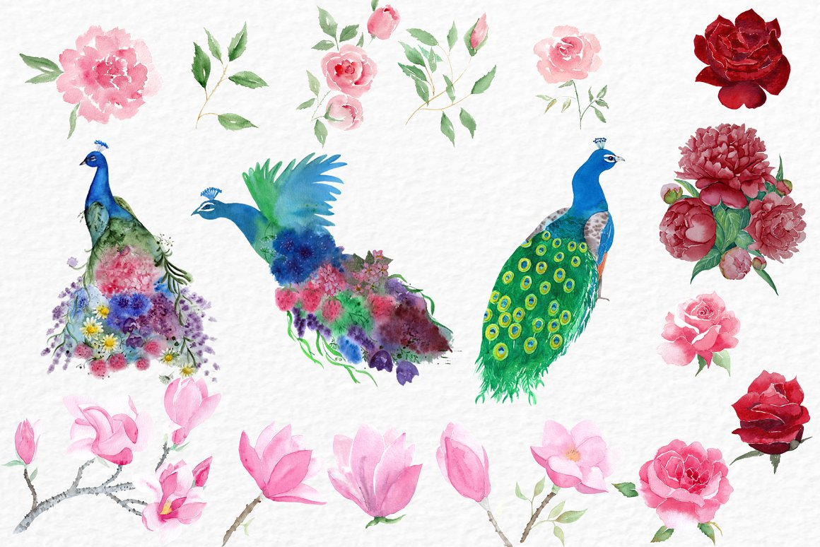 Watercolor Peacocks and Flowers example image 5