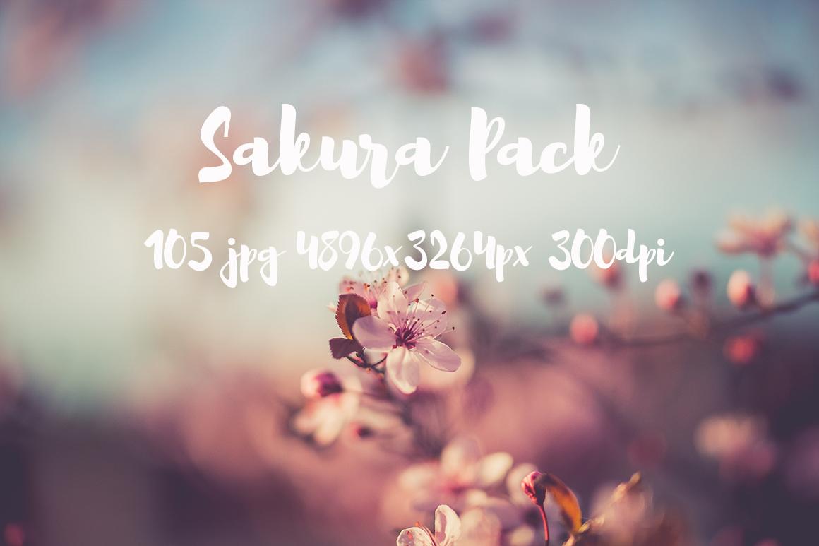 sakura photo pack example image 9