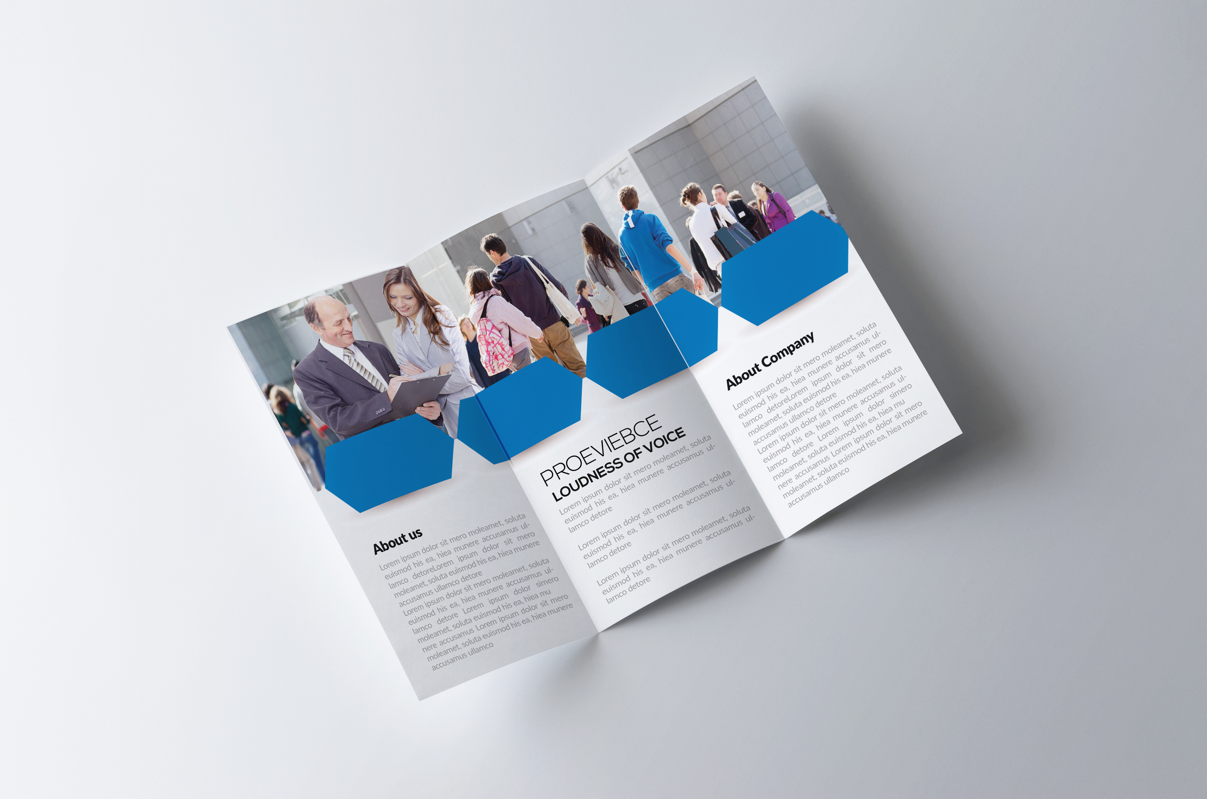 Business -Trifolds Brochures Templates example image 2
