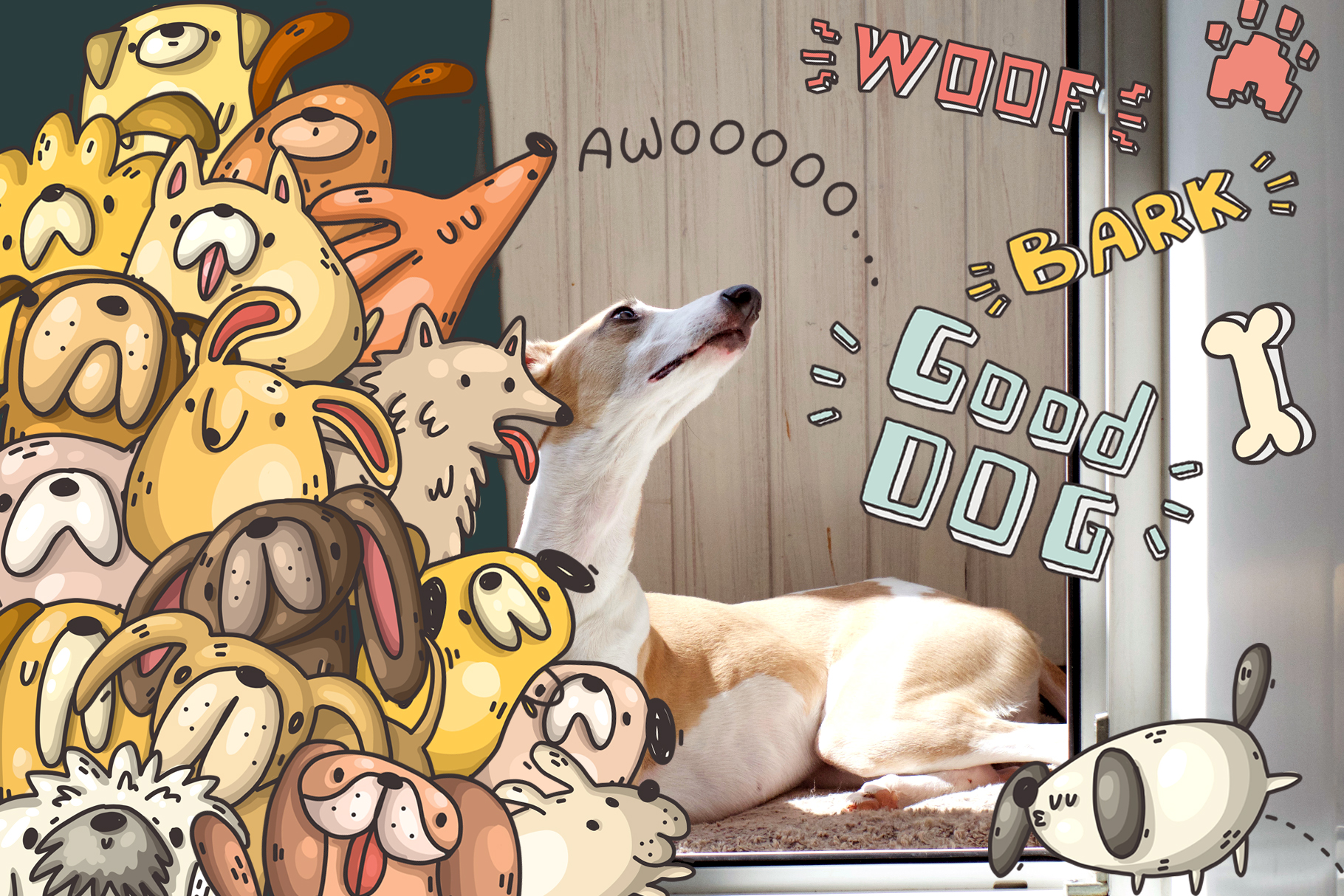 Set of funny dogs and patterns example image 4