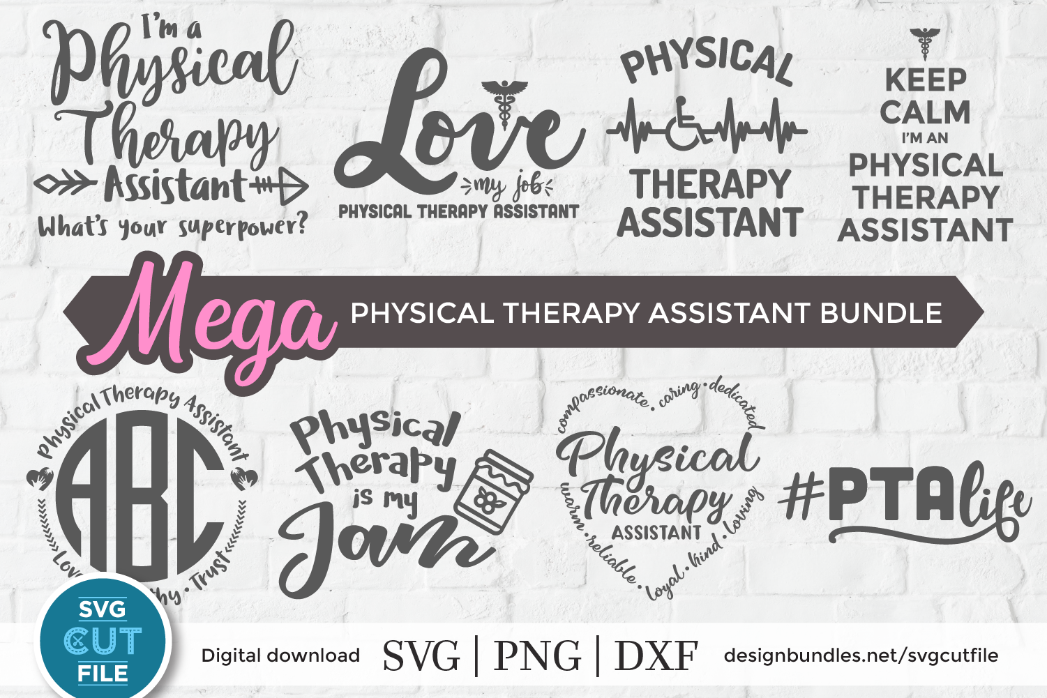 Physical therapy assistant svg bundle, physical therapist example image 1