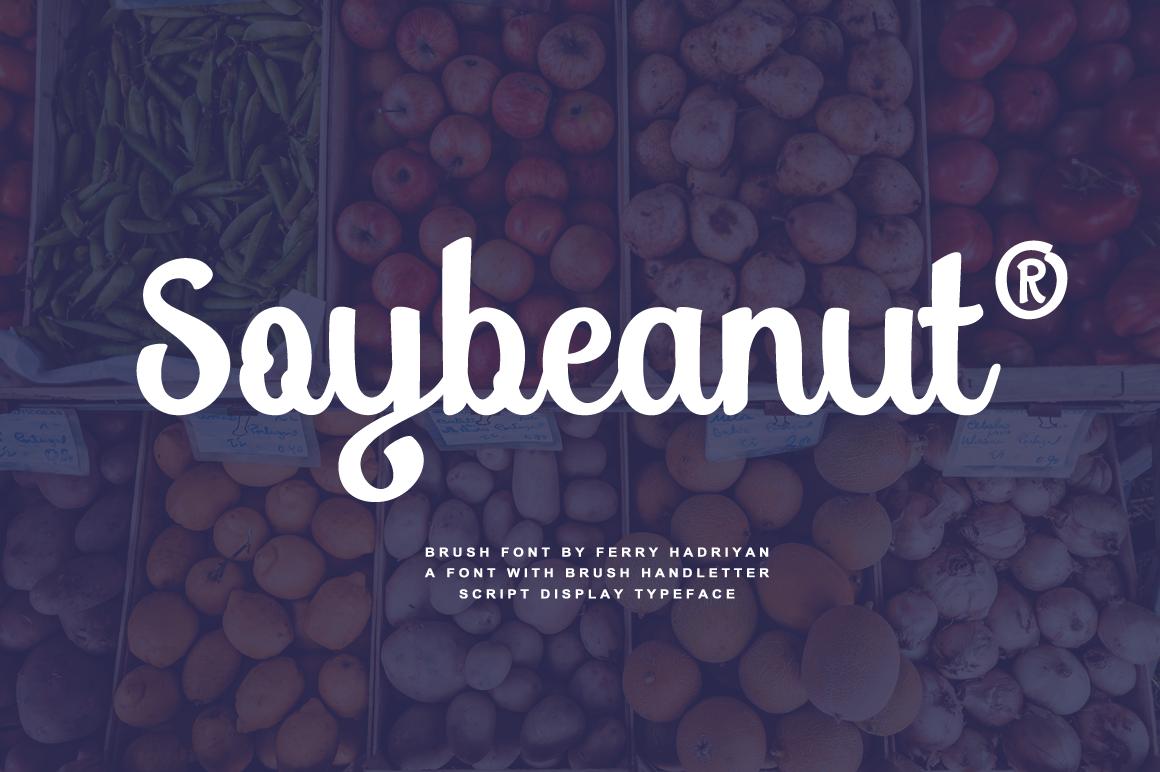 Soybeanut - Brush Script Font example image 1