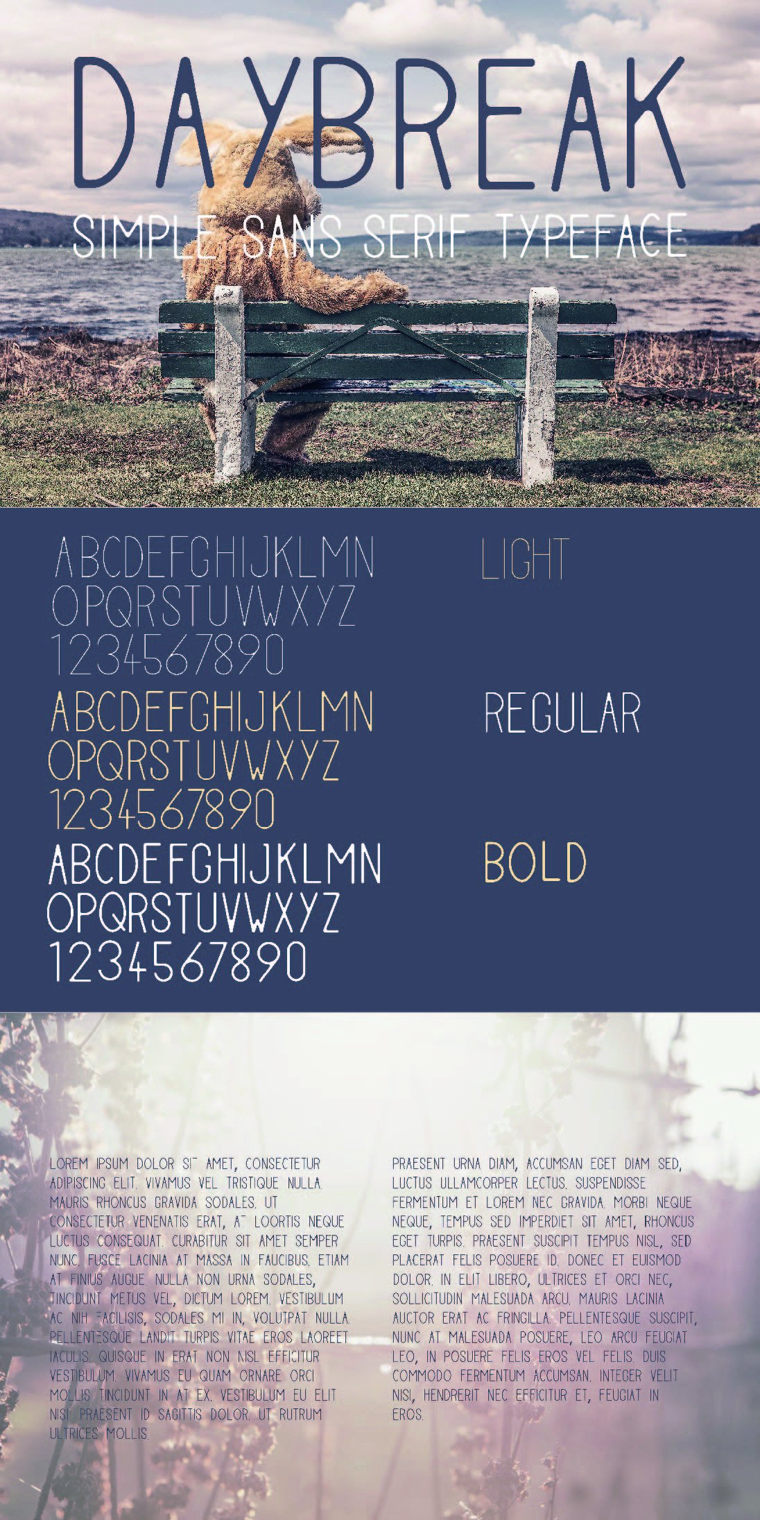 Typeface Bundle example image 2