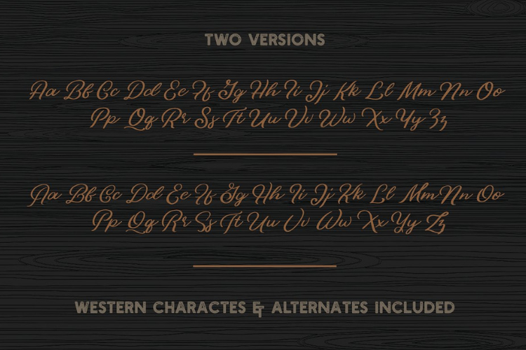 Bonfire - Brush Script example image 3