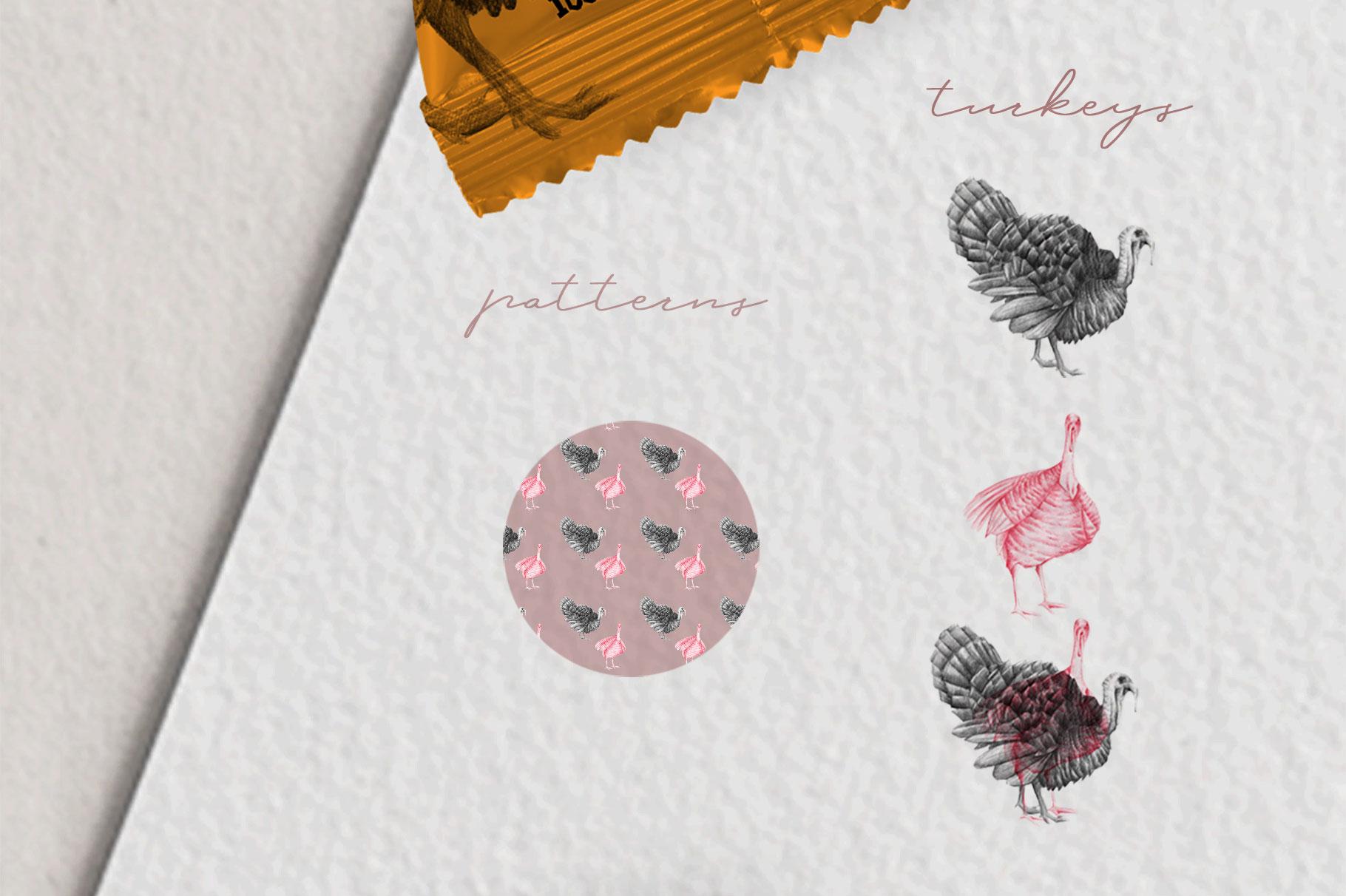 Hand drawn Turkeys Illustrations example image 3