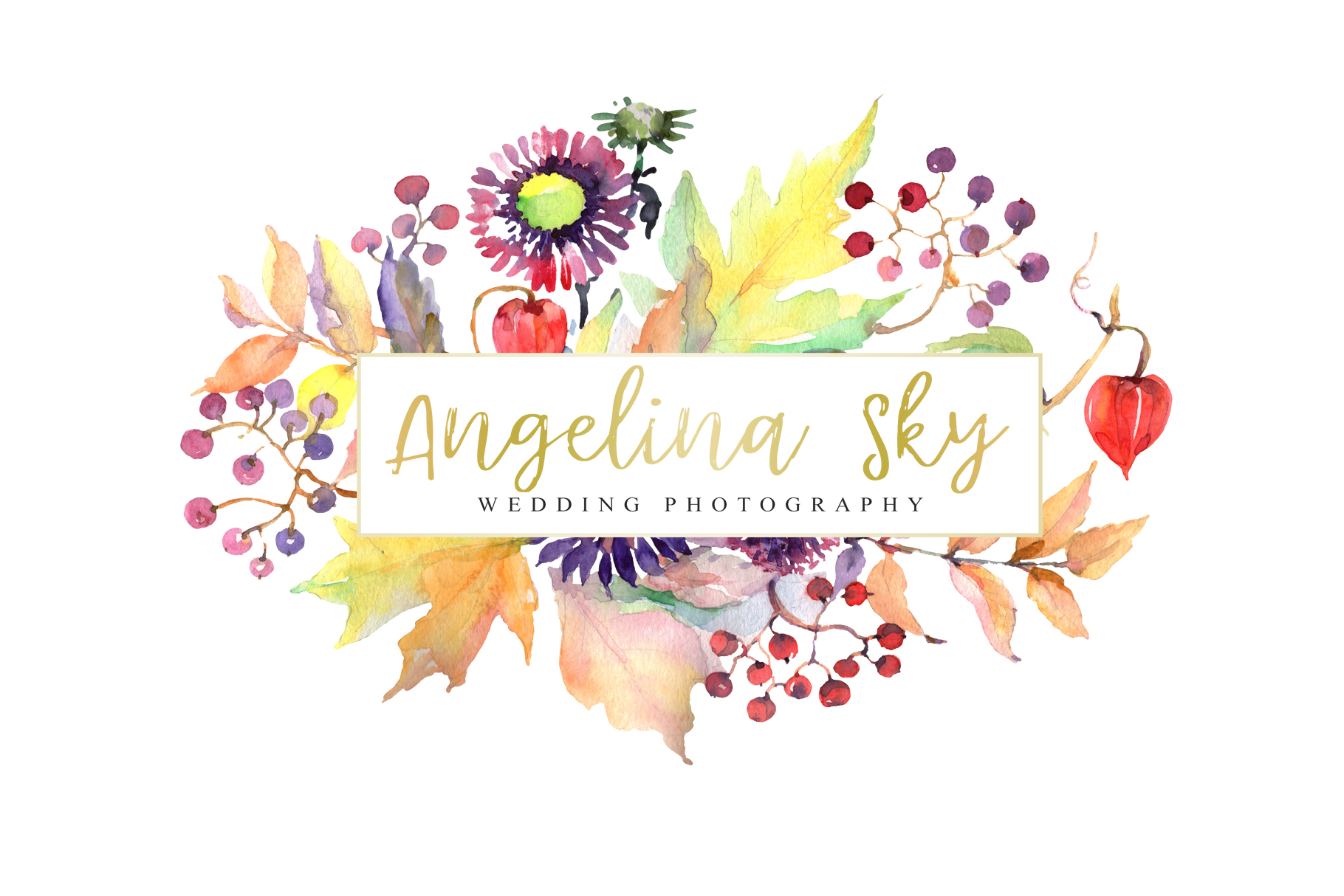 LOGO with asters, maple leaves and physalis Watercolor png example image 4
