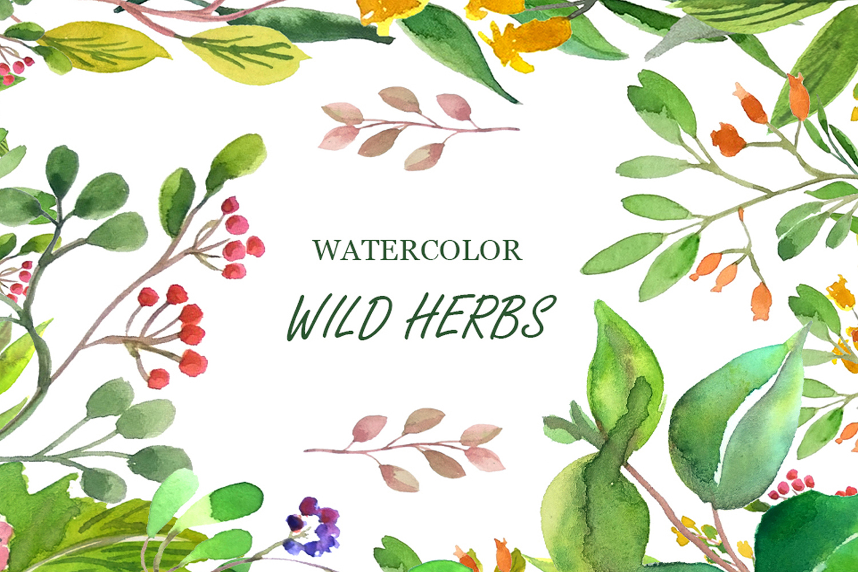 Wilde Herbs Watercolor Set example image 1