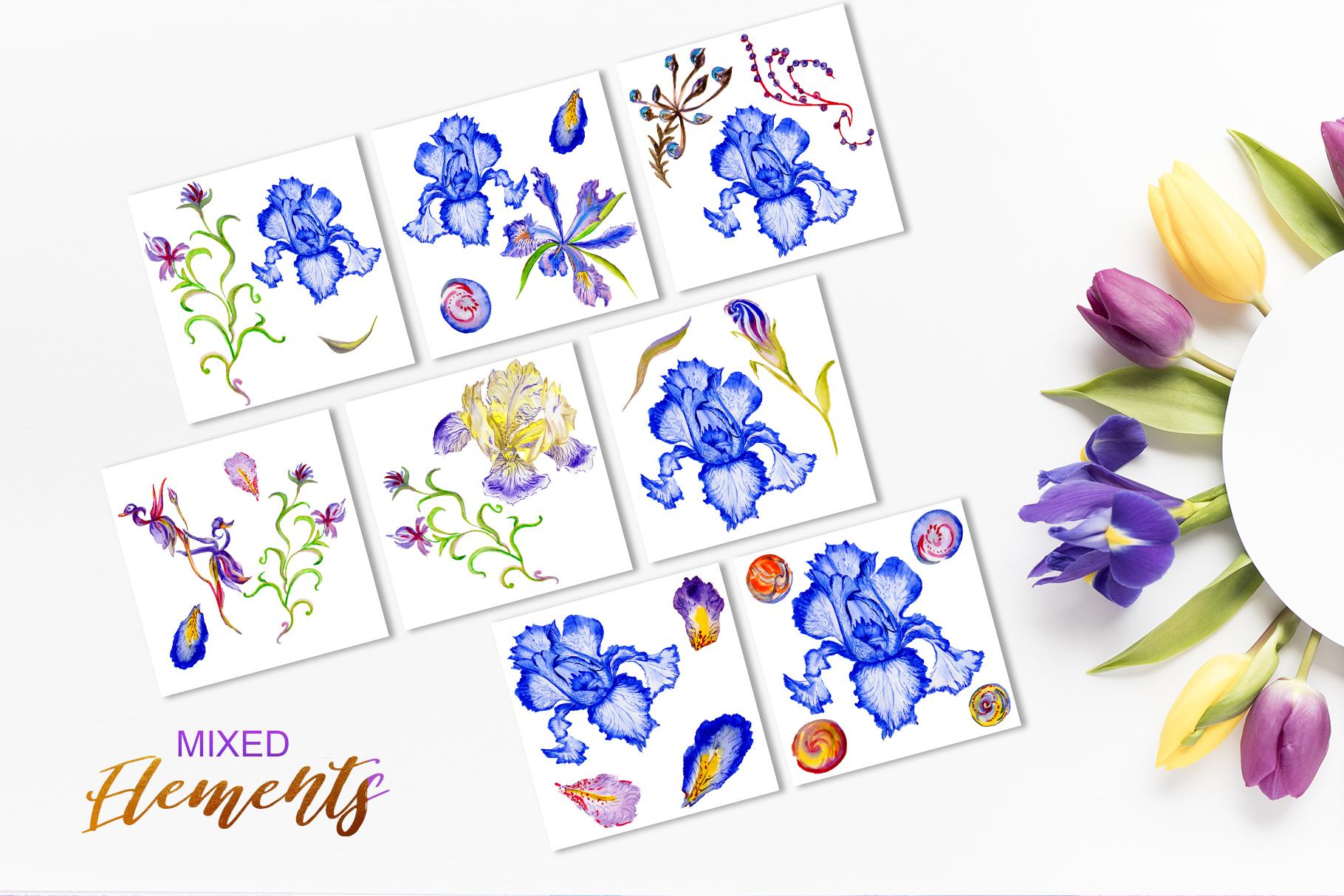 Iris blue Watercolor png example image 7