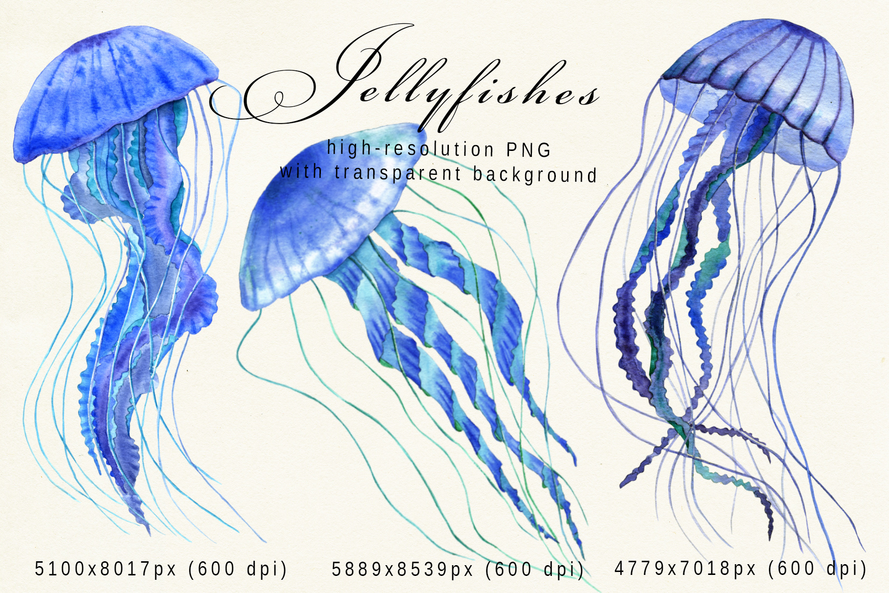 Underwater creatures - jellyfishes, octopuses, starfishes example image 7