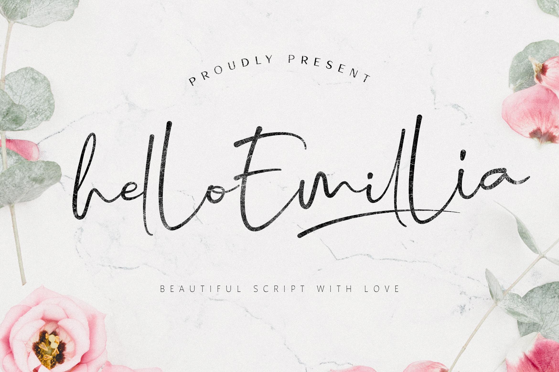 Hello Emillia Script example image 11