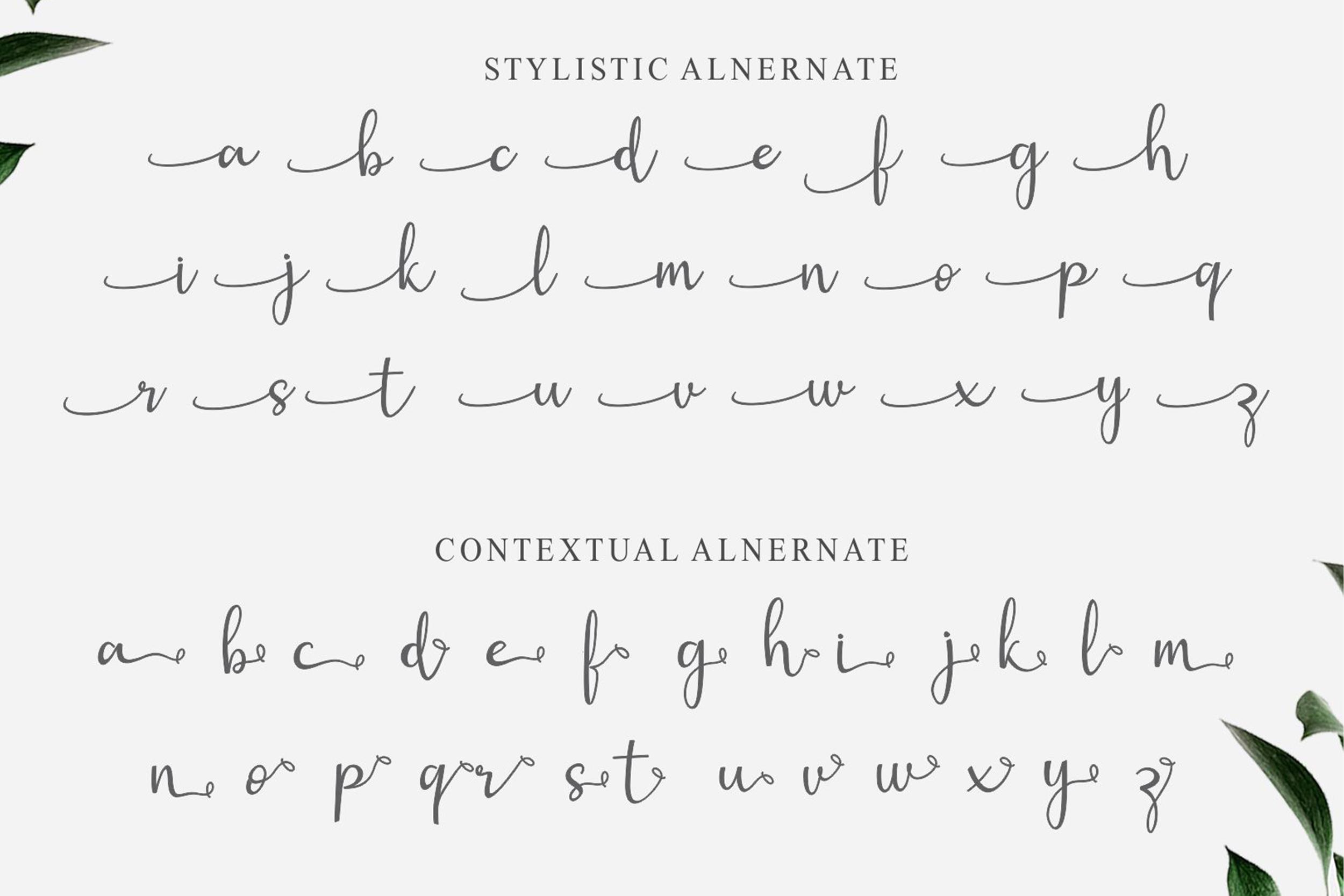 Gisella Font example image 8