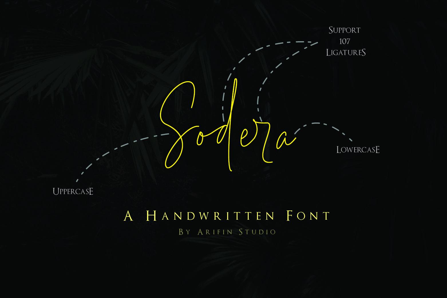 Sodera example image 1